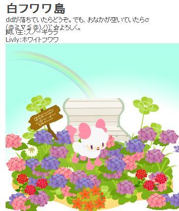 お花畑.JPG